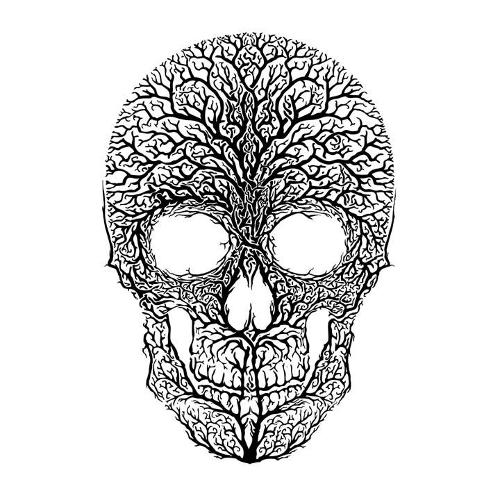 anthropomorph-I-Vincent Carrozza