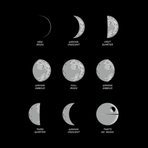 Know Your Moons – shirt.woot Exclusive